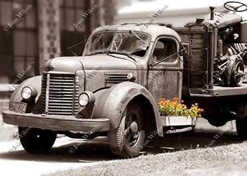 Vintage Decayed Truck Old Antique Spring Summer Flowers Marigolds Color Splash Sepia Fine Art Photography Photo ()