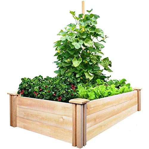 - Greenes Fence Cedar Raised Garden Kit 2 Ft. X 4 Ft. X 10.5 in.