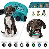 Bark Collar | Bark Collar Small Dog | Small Dog Bark Collar | Small Dog Shock Collar | Shock Collar Dog Bark Collar | Dog Shock Collar | Shock Collar for Small Dogs | Dog Bark Collar | 5lb Plus