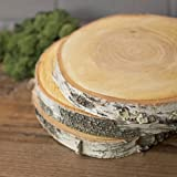 2 PACK-Wood Tree Round, Natural Birch Slab, Rustic, 9 to 11 in x 1 in, Large