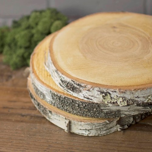 LSD 2 PACK-Wood Tree Round, Natural Birch Slab, Rustic, 9...