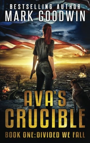 Divided We Fall: A Novel of the Coming Civil War in America (Ava's Crucible)