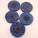 Roloc style Paint Stripper ''T'' & ''R'' Type 3'' discs 5pc set Blue