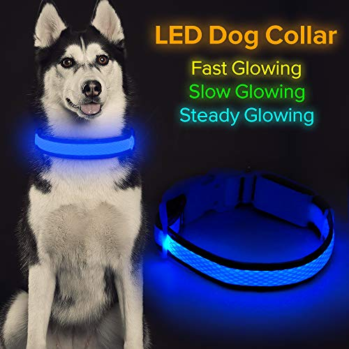 "HiGuard LED Dog Collar, USB Rechargeable Glowing Pet Collar Night Safety LED Light Up with Nylon Webbing Perfect for Small, Medium, Large Dogs (Large Collar[18""-24"" inch / 45.7-61cm], Royal Blue)"