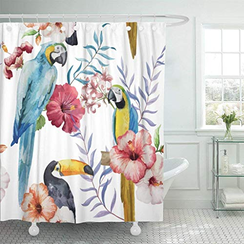 Hawaii State Bird And Flower - Afagahahs Fabric Shower Curtain Curtains with Hooks Colorful Vintage Bird Pattern Watercolor Green Brazil Parrot Animal Hawaii Flower Jungle Toucan Waterproof Decor Bathroom