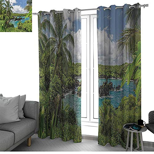 bybyhome Hawaiian Decorations Collection Window Treatments Draperies for Bedroom Relaxing Exotic Lagoon with Coconut Trees Nature Forest Clouds Plants Rocks Print Curtains for Living Room Green Blue