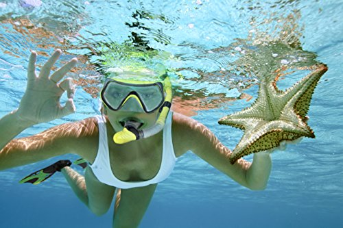 Aquadis Snorkel Set With Diving Mask Dry Top Snorkel And Open Foot Pocket Luxury Fins For Men