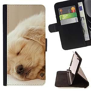 - Spanish Spaniel Puppy Dog - Estilo PU billetera de cuero del soporte del tir???¡¯????n [solapa de cierre] Cubierta- For HTC DESIRE 816 £¨ Devil Case £©