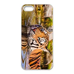 The Tiger Head Hight Quality Plastic Case for Iphone 5s