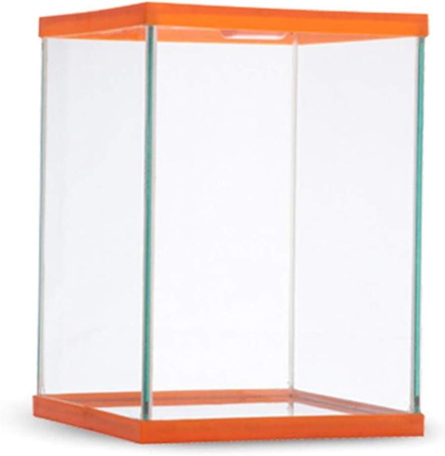 Reptil Terrario de Vidrio Caja de alimentación Transparente Estuche de Escalada de Insectos Naranja L: Amazon.es: Jardín