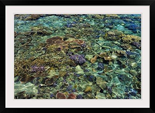 GreatBIGCanvas ''Marine National Park, Karimunjawa, Indonesia'' Photographic Print with Black Frame, 36'' x 24'' by greatBIGcanvas