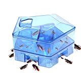 DayCount Roach Killer Indoor Traps Tool, Non-Toxic Cockroaches Trap Reusable & Physical Capture Cockroach Traps Eco-Friendly and Safe for Home Office Kitchen