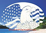 Oval Flag & Eagle Horizontal Etched Window Decal Vinyl Glass Cling - 10.5'' x 16'' - White with Clear Design Elements