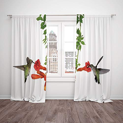 Vineyards Nectar (iPrint Satin Window Drapes Kitchen Curtains,Hummingbirds Decor,Two Hummingbirds Sip Nectar from a Trumpet Vine Blossoms Summertime,Living Room Bedroom Kitchen Cafe Window Drapes 2 Panel Set)