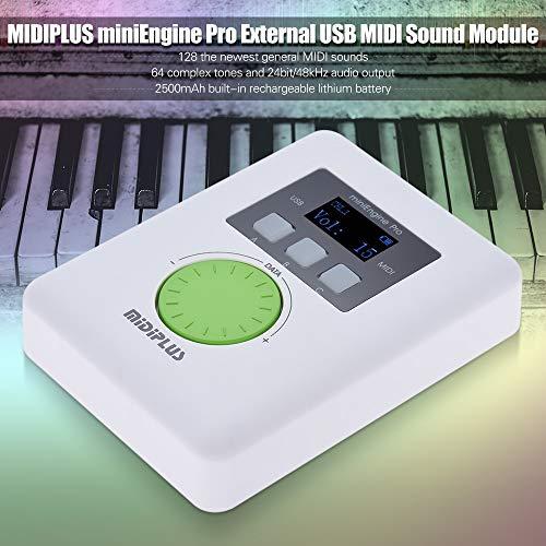 Pro External USB Sound Module Built-in Rechargeable Lithium Battery 128 MIDI Sounds 64 Tones (Best Midi Sound Module)