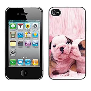 YiPhone /// Prima de resorte delgada de la cubierta del caso de Shell Armor - French Bulldog Cute Pink Love Dogs - Apple iPhone 4 / 4S