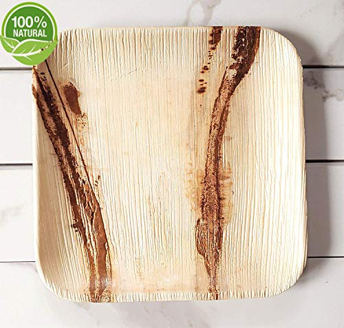 "Party Plate Pack of 75 Eco-Friendly Dinnerware- Disposable (25)8"" Square Palm Leaf Plates, (25) Wood Forks, (25) Wood Knives"