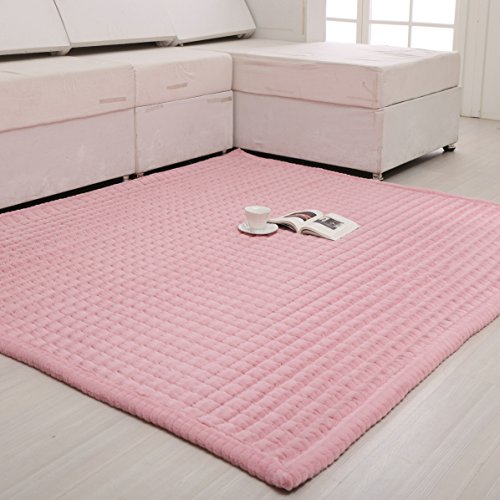 Wolala Home Surper Soft Plush Pink Living Room Area Rug Smooth Cozy Thicking Non Skid Bedroom Bedside Carpet(2'6x6'0)