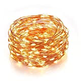 Homestarry HS-SL-010 Dimmable String Lights Pro, 240 LED's Copper Wire, with Wireless Handheld...