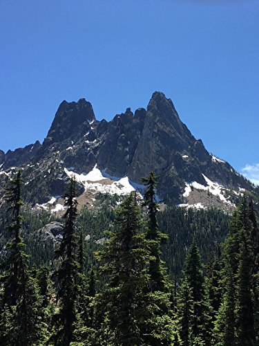 Hiking with Valentine - Washington Pass Overlook Trail, North Cascades National ()