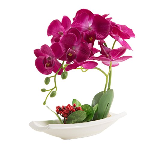 Phaleanopsis Orchid in Vase Silk Flower Arrangement Decoration (Red)