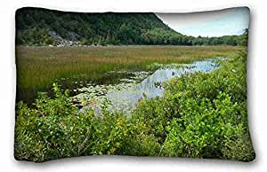 Generic Personalized Nature Custom Zippered Pillow Case 20x30 inches(one sides) from Surprise you suitable for Twin-bed