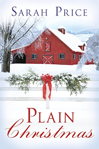The Amish Circle Quilt - Plain Christmas (The Plain Fame Book 6)
