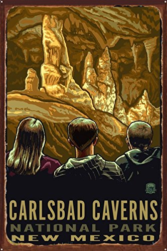 Carlsbad Caverns New Mexico Rustic Metal Art Print by Paul A. Lanquist (24