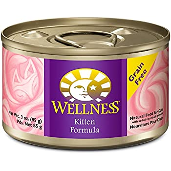 Amazon Com Wellness Natural Grain Free Wet Canned Cat