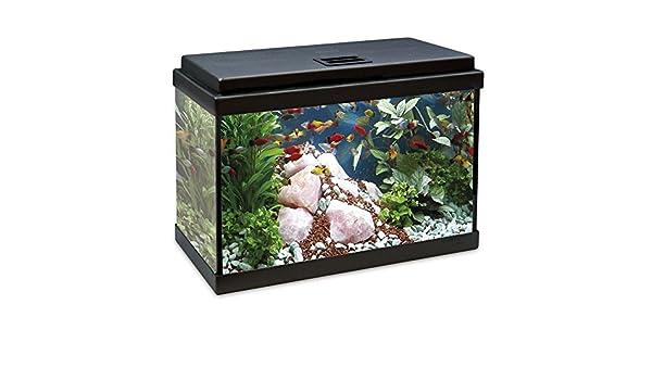 ICA KDB33 Kit Interior Aqualed con Filtro Biopower, Negro: Amazon.es ...