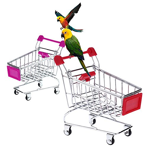 How to buy the best bird toys shopping cart?