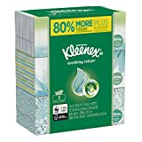 Kleenex Soothing Lotion Facial Tissues with Aloe & Vitamin E, Flat Box, 110 Tissues per Flat Box, 3 Pack (330 Tissues Total)