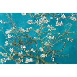 Van Gogh (Almond Blossom San Ramy 1890) Maxi Poster 61x91.5 cm