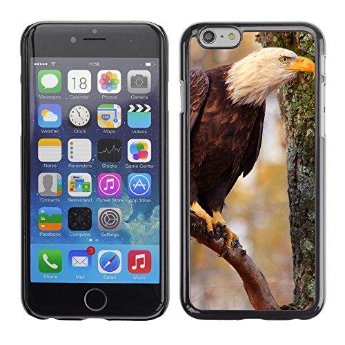"""Premio Sottile Slim Cassa Custodia Case Cover Shell // F00010713 Aigle chauve // Apple iPhone 6 6S 6G 4.7"""""""
