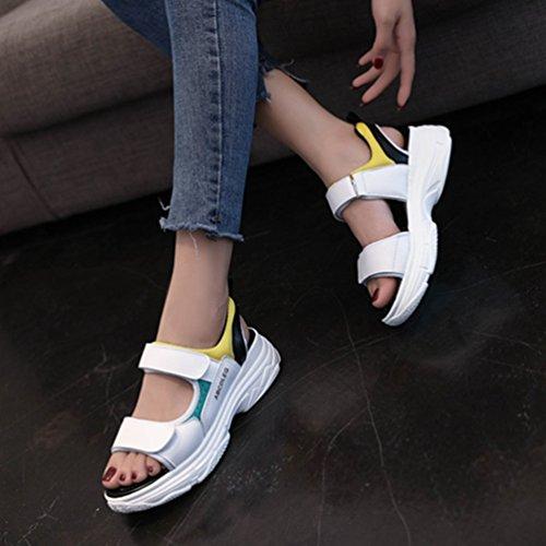 Chaussure Sandale Sport À Confort De 40 Plateforme Scratch 5cm Vert Antichoc Avec Épaisse Pantoufle Loisir Semelle Femme 35 twpdqxaI5t
