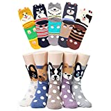 CaiDieNu 10 Pairs Womens Socks Cotton Cute Cartoon Animals Character Socks