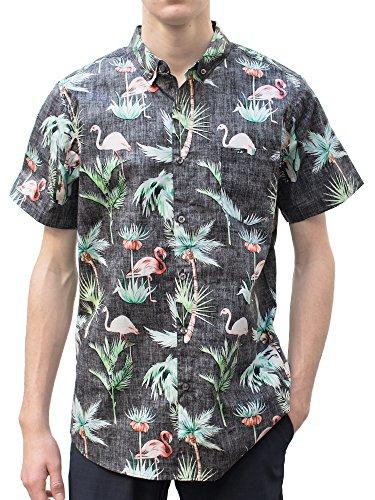 Hawaiian Shirts Crazy - Molokai Casual Lifestyle Moden Fit Mens Short Sleeve Button Down Flamingo Hawaiian Shirt-Blk-XL