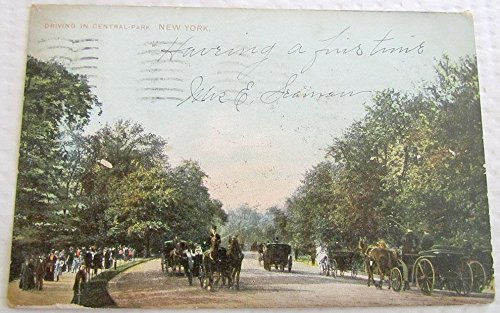 DRIVING IN CENTRAL PARK NEW YORK UNDIVIDED 1908 ANTIQUE POSTCARD HORSE - Central Horses Park