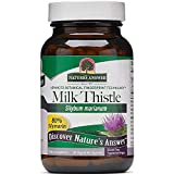 Nature s Answer Milk Thistle Seed Standardized Extract 60 Vegetarian Capsules For Sale