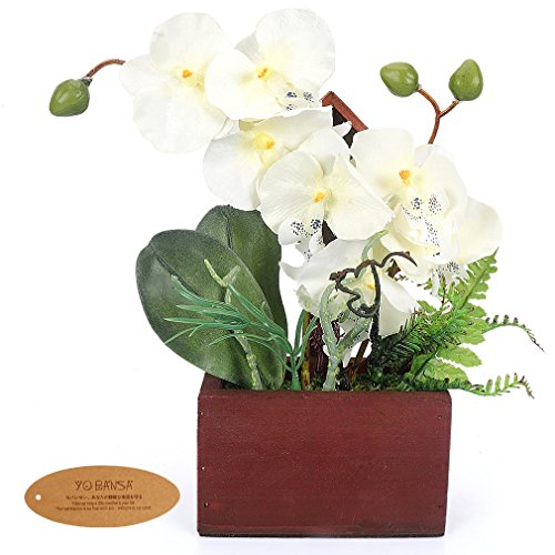 (Yobansa Real Touch Phalaenopsis Artificial Orchid Arrangement with Wooden Flower Pots Artificial Flowers for Home Office Decoration (White))