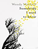 Book Cover for Somebody I Used to Know
