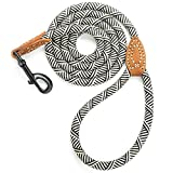 Mile High Life Leather Tailor Handle Mountain Climbing Dog Rope Leash with Heavy Duty Metal Sturdy Clasp (White, 5 FT)