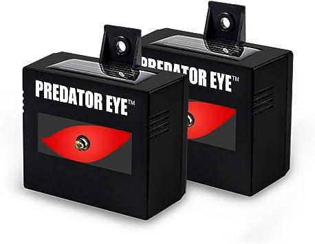 Amazon.com: Predator Eye–Aspectek–Ahuyentador ...
