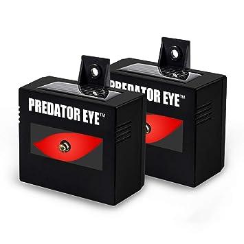 Aspectek Predator Ojos noche tiempo funciona con energía solar repelente de animales - 2 Pack, resistente al agua, control de animales, animales nocturnos, ...