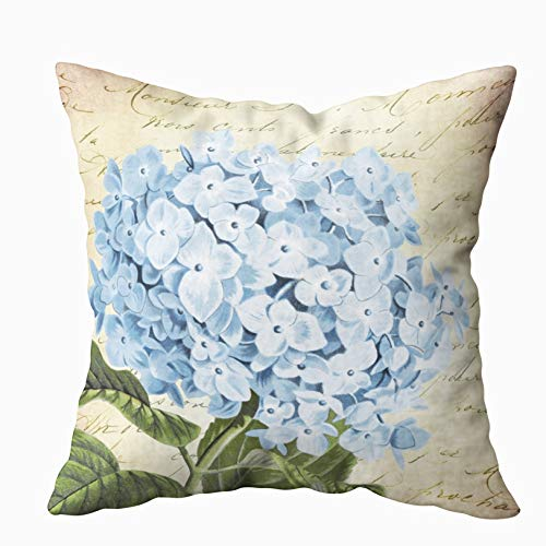 - Capsceoll Christmas Blue Hydrangea Flower Vintage Decorative Throw Pillow Case 20X20Inch,Home Decoration Pillowcase Zippered Pillow Covers Cushion Cover with Words for Book Lover Worm Sofa Couch