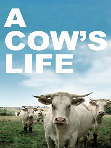 A Cow's Life (Silent) for sale  Delivered anywhere in USA