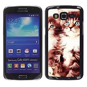 A-type Arte & diseño plástico duro Fundas Cover Cubre Hard Case Cover para Samsung Galaxy Grand 2 (Gatitos lindos)