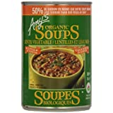Amy'S Kitchen Organic Light In Sodium Lentil Vegetable Soup, 398 ml
