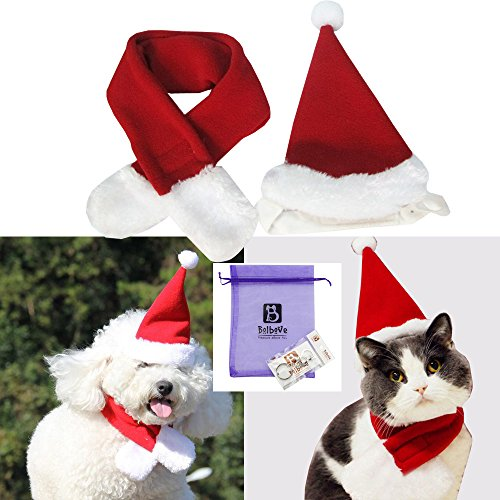 Bolbove Pet Adjustable Christmas Santa Hat + Scarf for Small Dogs & Cats Holiday Accessory (Free Size) -