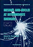 img - for Proceedings of the International Conference on Mesons and Nuclei at Intermediate Energies: Dubna, Russia 3-7 May 1994 book / textbook / text book